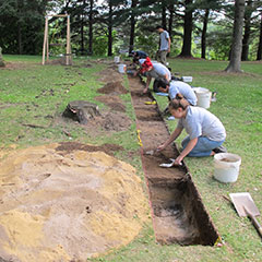 Colour photograph of several trainee archaeologists excavating the soil in a very straight line.