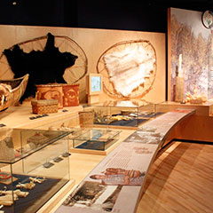 Colour photograph of an exhibition where several objects belonging to the material culture of the Wôbanakis are shown. A white and a black fur are visible.