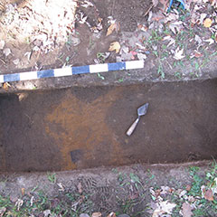 Colour photograph showing a trowel and an archeological search for traces of wood. The soil is reddened.